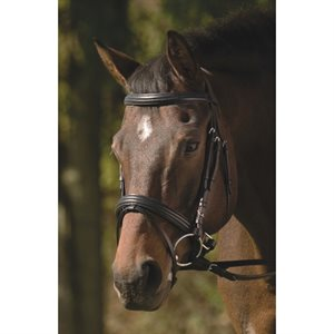 BRIDLE HENRI DE RIVEL BLACK