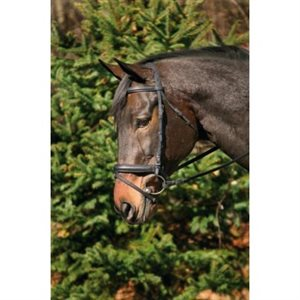 BRIDLE HDR PADDED WITH WEB REINS DRESSAGE BLACK COB