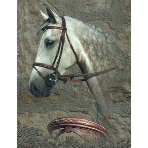 BRIDE DY'ON BRUNE AVEC FLASH TETIERE ANATOMIQUE BRASS COB