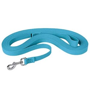 LONGE 30' SNAP SILVER, TURQUOISE