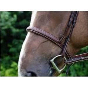 MUSEROLLE DYON BRUNE STYLE HUNTER NOSEBAND AND BROWBAND