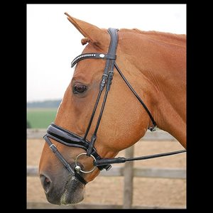 DY'ON BRIDLE DRESSAGE LARGE PATENT BLACK LEATHER FULL